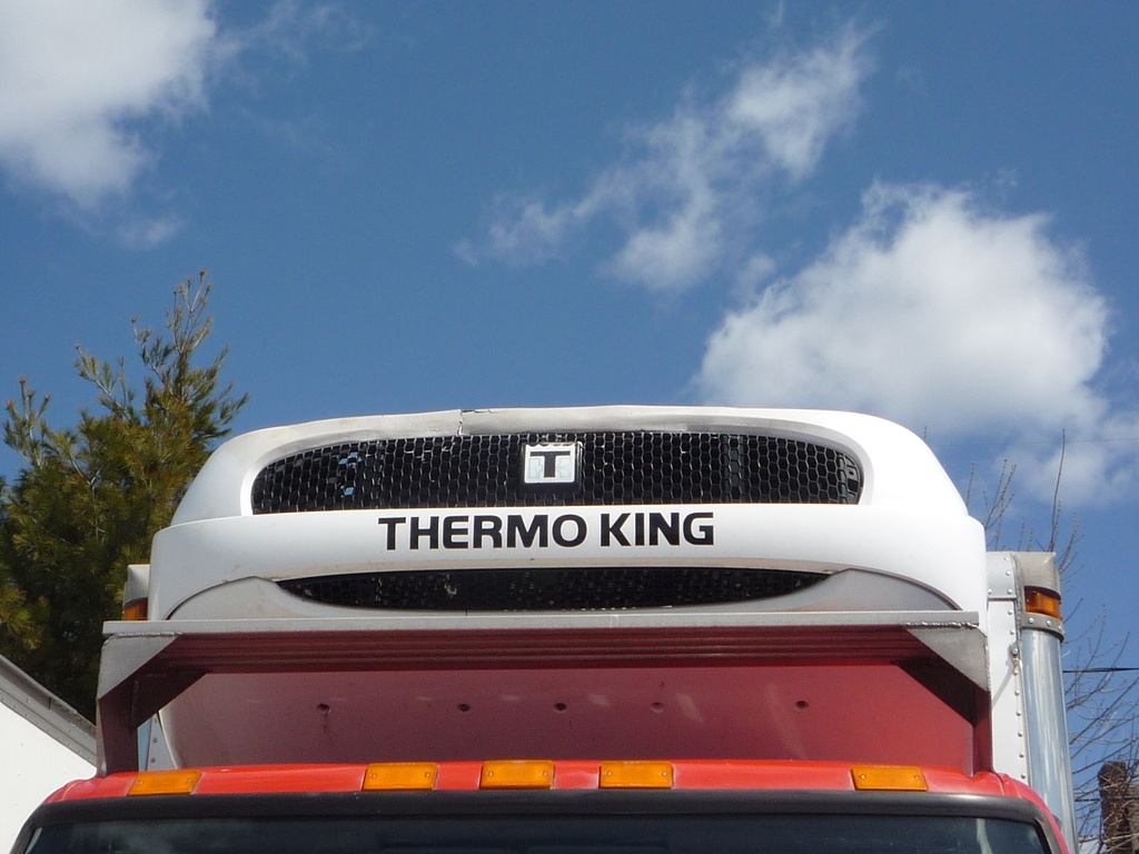 2010 OTHER THERMO KING T-1000 Truck Body